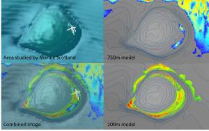 Clockwise from the top left, an image of where on Rosemary Bank Marine Scotland carried out their survey, the area of Rosemary Bank our 750m model predicted     the deep-sea sponge reef should be, the area of Rosemary Bank our 200m model predicted sponge reef should be, all three maps overlaid to show the area Marine Scotland surveyed aligns well with where both models predicted sponge reefs would be.